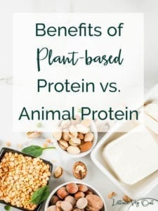 Health benefits of plant-based protein - is plant protein healthy