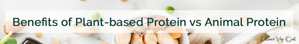 Is plant protein healthy - health benefits of plant protein vs animal protein