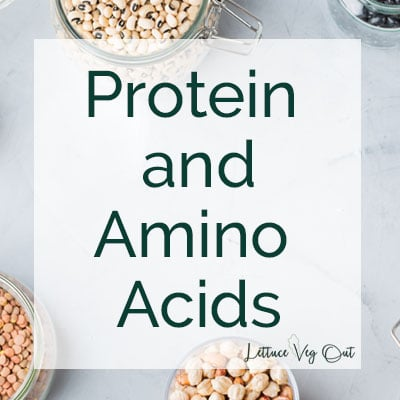 Protein and amino acids text over grey background with a few jars of vegan protein around the edges
