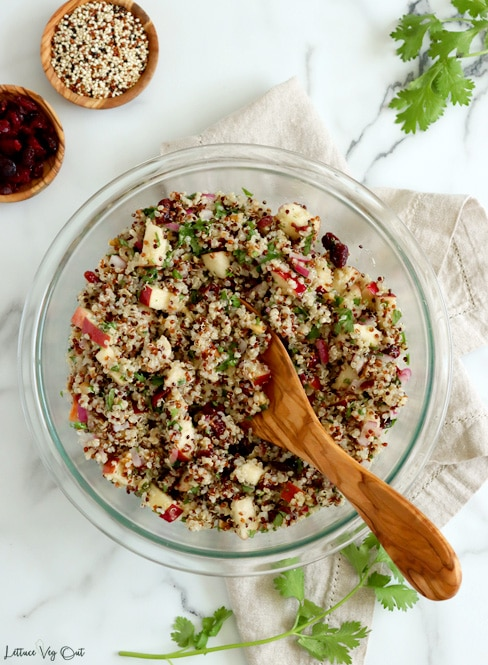 Top view of large glass bowl filled with quinoa salad made with apples, walnuts, cilantro, cranberries and red onion, with a large wood spoon resting in bowl. Small wood dishes of dry cranberries and tri-color quinoa (white, red, black) sit in top left corner with cilantro garnish in top right corner and around bottom right of bowl.