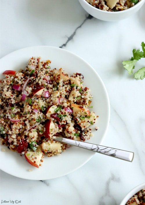 Top view of white plate filled with tri-colored quinoa, apple, cranberry and walnut salad sitting on white-grey marble background. Spoon resting in salad on plate. Small bit of two white bowls filled with salad visible in top right and bottom right corners along with a piece of cilantro on right edge of image.