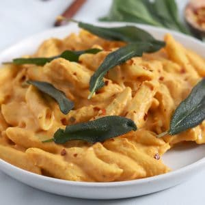 Square cropped image of a close up of a plate of penne pasta tossed with pumpkin sauce and garnished with fried sage leaves.